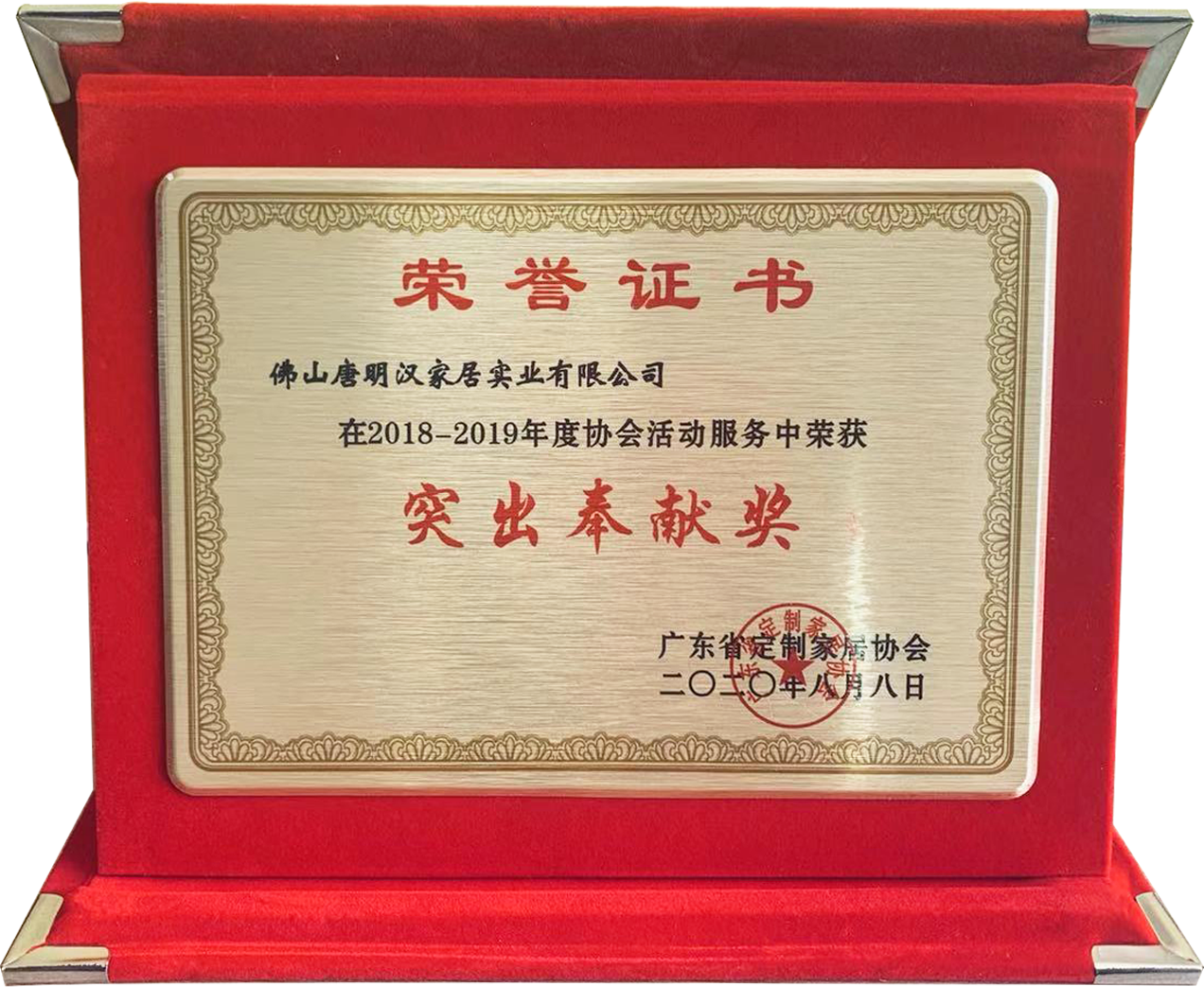 Outstanding service award of the customized Association